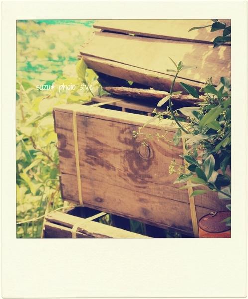 box-pora.jpg