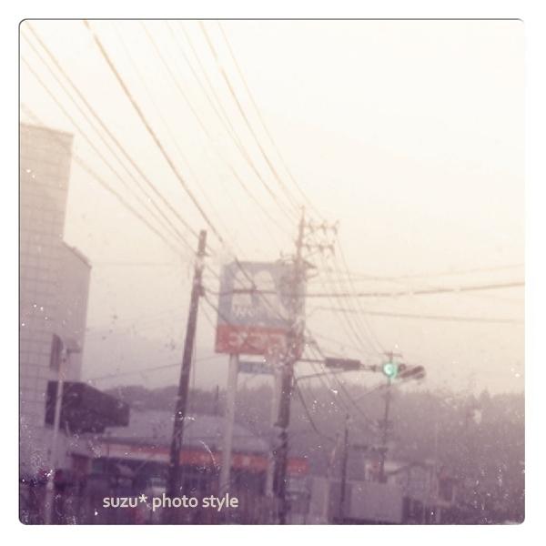 photo_org (3).jpg