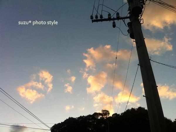 photo_org (1).jpg